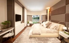 A Miami Modern Home